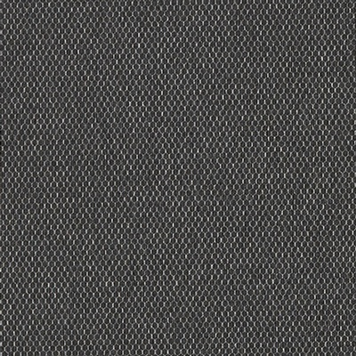 DN2-PTX-10 | Blacks | LEVEY | Canada's National Wallcovering Distributor: click to enlarge