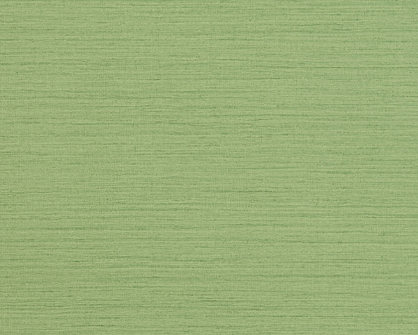 Green Wallcovering, Shima Texture Commercial Vinyl Wallcovering from Levey